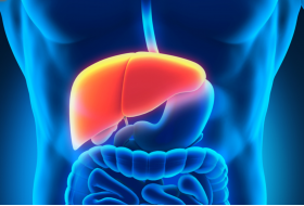 ULTRASOUND TECHNOLOGY ALLOWS US TO ACCURATELY STAGE FATTY LIVER DISEAS ... - Bimedis - 1